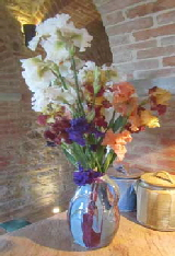 A vase of our irises